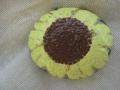 sunflower rock