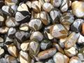 bowl of Heart rocks